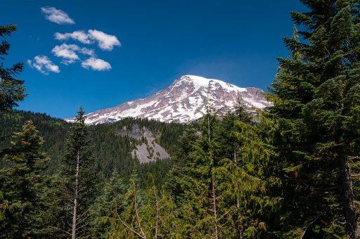 Mt. Rainier National Park View Seattle